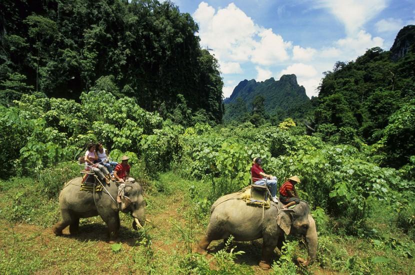 THAILANDE  - Immersion dans la jungle - A la poursuite des diamants verts. Au départ de l'Elephant Hills, un éco-lodge luxueux, découverte de la jungle à pied sous la voûte végétale, en canoë et raft en bambou sur la rivière, à dos d'éléphant… (100 photos)  Voir le reportage sur Divergence-Images