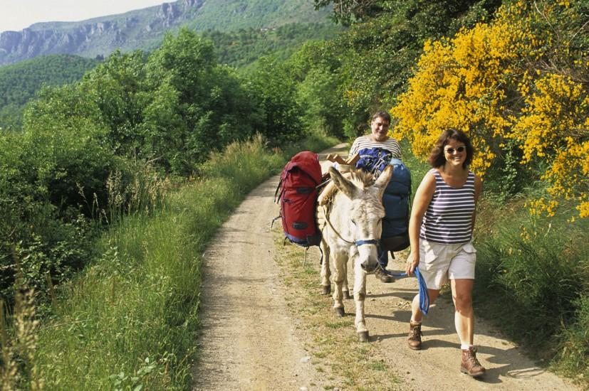 LOZERE - Randonnée sur le GR70 - A dos d'âne dans les Cévennes de Stevenson. Sur les traces de l'écrivain entre le Mont Lozère, le Col de Finiels, le Pont de Montvert, Bédouès, Florac, Saint-Julien d'Arpaon, et St Germain de Calberte (40 photos) Voir le reportage sur Divergence-Images