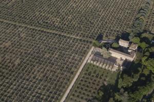 France, Gard (30), Uzès, mas et oliveraie (vue aérienne)