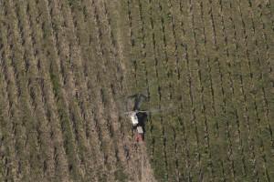 France, Gard (30), épandage de pesticides dans des vignes, Castillon-du-Gard (vue aérienne)