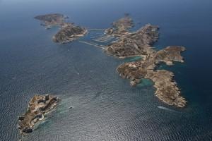 France, Bouches-du-Rhone (13),  Marseille, Archipel du Frioul et château d'If (vue aérienne)