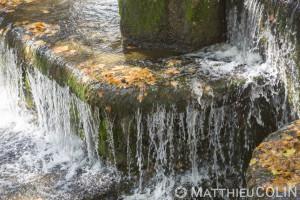 France, Gard (30), Nîmes, quai du canal et jardins de la Fontaine