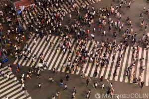 Japon, île de Honshu, région de Kanto, Tokyo, quartier de Shibuya, carrefour de Shibuya//Japan, Honshu Island, Kanto region, Tokyo, Shibuya district, Shibuya crossroads