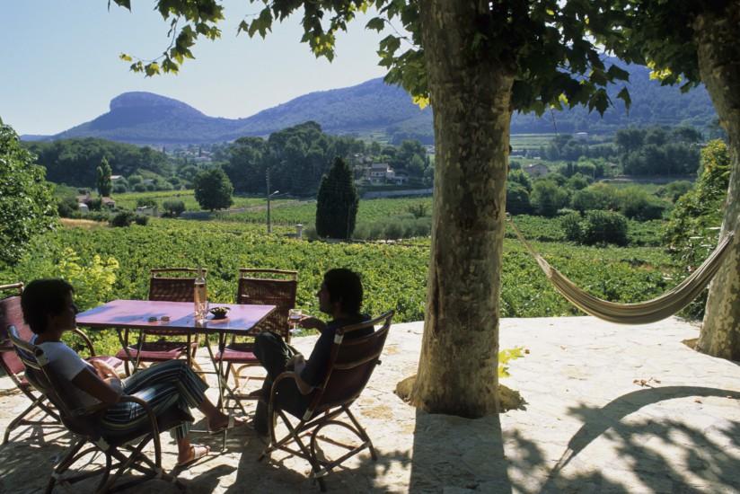 Cassis, maison d'hôte au milieu des vignes