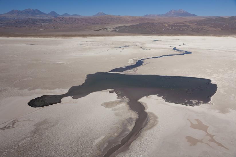 Chili, salar d'Atacama
