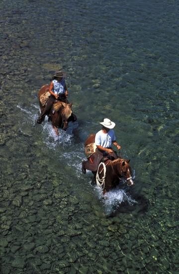 Randonnée à cheval en Gaspesie