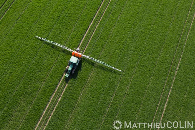 Exploitation agricole lors d'un épandage de pesticides dont insecticides, fongicides, herbicides, parasiticides (vue aérienne)