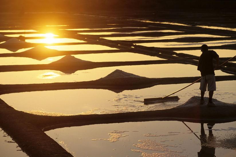 LOIRE ATLANTIQUE - Presqu'île de Guérande. Les paludiers ont retrouvé le chemin des marais. Ils y cueillent l'or blanc que la mode a remis au goût du jour. De juin à octobre, ils reprennent leurs gestes centenaires, troussant le sel au moyen de las, de grands râteaux aux longs manches.(100 photos) Voir le reportage sur Divergence-Images