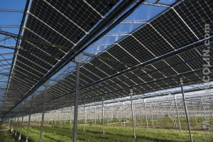 France, Ardèche (07), Curas, centrale solaire photovoltaïque Cap Vert Energie sur des serres agricoles