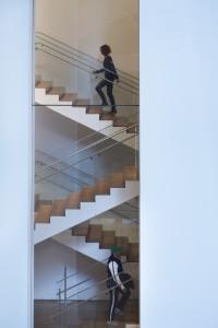 Etats-Unis, New York, Manhattan, Midtown, le MOMA (Museum of Modern Art), musée d'art moderne et d'art contemporain