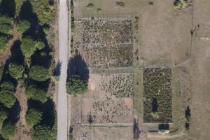 France, Var (83), golfe de Saint-Tropez,  Grimaud, terrains de tennis à l'abandon (vue aérienne)
