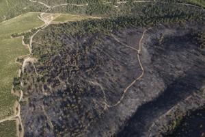 France, Vaucluse (84), Luberon, le feu de forêt du 24 juillet 2017 entre Mirabeau et la Bastidonne. l'incendie a ravagé 1300 ha, survol en parapente motorisé (vue aérienne)