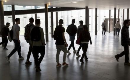 France, Bouches-du-Rhône, Marseille, Campus de Luminy, Université Aix-Marseille, Faculté des sciences de Luminy