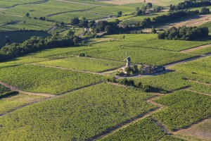 France, Maine-et-Loire (49), Thouarcé,  AOC Bonnezeaux, Moulin à vent (vue aérienne)
