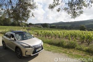 France, Var (83), Le Castellet, Vignes AOC Bandol, Lexus RX450 h Hydrid
